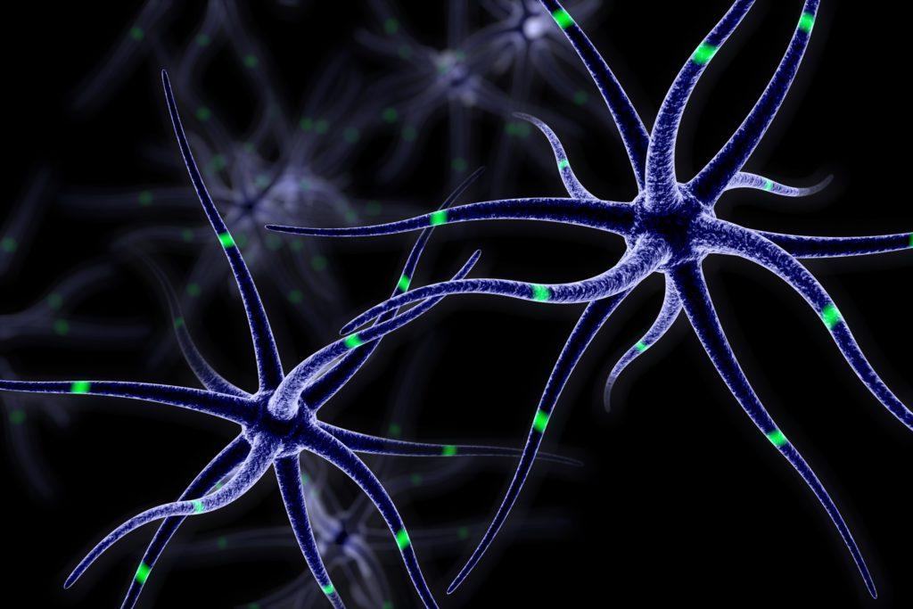 Bwegungsmangel im mittleren Lebensalter verstärkt den Abbau des Hirnvolumens im Alter. (Bild: leumassh/fotolia.com)