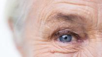 Seneszente Zellen haben einen maßgeblichen Einfluss auf die Alterung und die Lebenserwartung. (Bild: Syda Productions/fotolia.com)