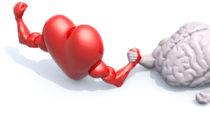 Forscher stellten jetzt in einer großen Untersuchung fest, dass eine verbesserte Gesundheit des Herzens, mit einer verbesserten Gesundheit und Leistungsfähigkeit unseres Gehrins zusammenhängt. (Bild:fabioberti.it/fotolia.com)