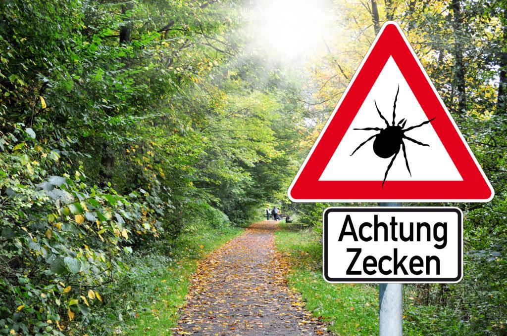 Achtung Zecken. Bild: stockWERK - fotolia