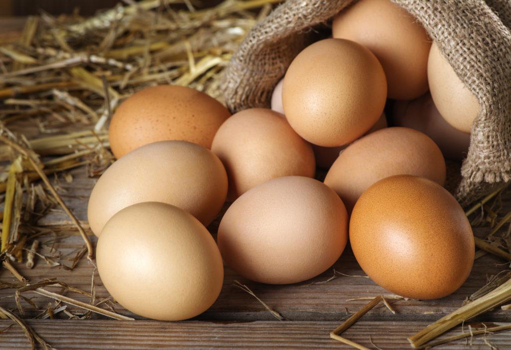 Die richtige Lagerung von Eiern. Bild: iprachenko - fotolia