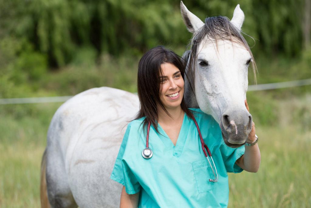Heilkräuter für Pferde. Bild: 135pixels - fotolia