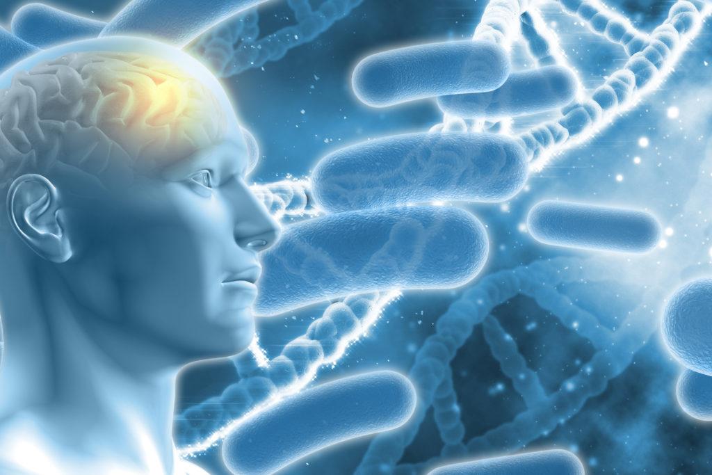 Forschern gelingt im Maus-Modell die Beseitungung der Alzheimer-Symptome. (Bild: Kirsty Pargeter/fotolia.com)