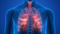 Wissenschaftler haben ein mögliches Schlüssel-Gen für die Behandlung von chronischen Lungenerkrankungen entdeckt. (Bild: magicmine/fotolia.com)