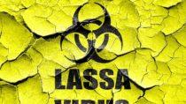 Dem Lassa-Patienten in Frankfurt geht es laut Klinik-Angaben deutlich besser. Der Bestatter hatte sich bei einer Leiche infiziert. (Bild: Argus/fotolia.com)