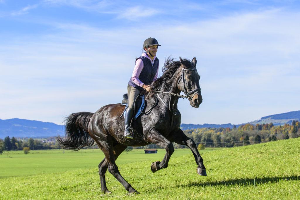 Reiten eignet sich nicht nur für einen Ausflug ins Grüne, sondern auch als Gesundheitssport. Auf dem Pferd ist der ganze Körper gefordert. (Bild: ARochau/fotolia.com)