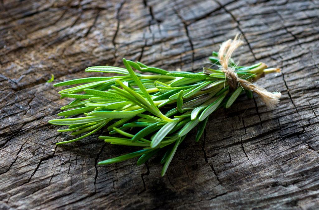 Wissenschaftler fanden heraus, dass das Aroma von Rosmarin die Leistung unseres Gedächtnisses verbessert. Gerade ältere Menschen können sich durch den Duft der Pflanze besser erinnern. (Bild: Dani Vincek/fotolia.com)