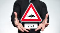 Das Zika-Virus kann offenbar auch von Männern in homosexuellen Beziehungen weitergegeben werden. (Bild: Henrik Dolle/fotolia.com)