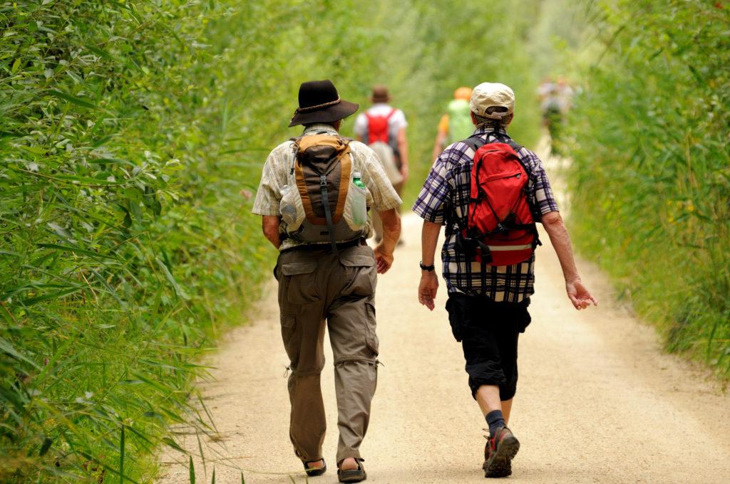 Körperliche Aktivität wie beispielweise Wandern, Joggen oder Fahrradfahren senkt unser Risiko für verschiedene Krebserkrankungen. Somit sollten wir alle unseren inneren
