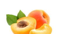 Aprikosen sind lecker und sehr beliebt, es gibt jetzt aber einen fragwürdigen Gesundheitstrend, der Krebspatienten dazu rät Aprikosenkerne zu essen. Die Kerne sollen die Asurbeitung der Krankheit verhindern. Forscher warnen aber davor, dass Aprikosenkerne ein Gift in unserem Körper bilden. (Bild: Dionisvera/fotolia.com)