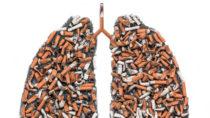 Gruselbilder zeigen in Zukunft die Gefahren des Rauchens.