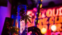 """In Rheinland-Pfalz ist eine junge Frau nach dem Konsum von Kräutermischungen, sogenannten """"Legal Highs"""", gestorben. Experten warnen immer wieder vor den Gefahren der legalen Drogen. (Bild: iredding01/fotolia.com)"""