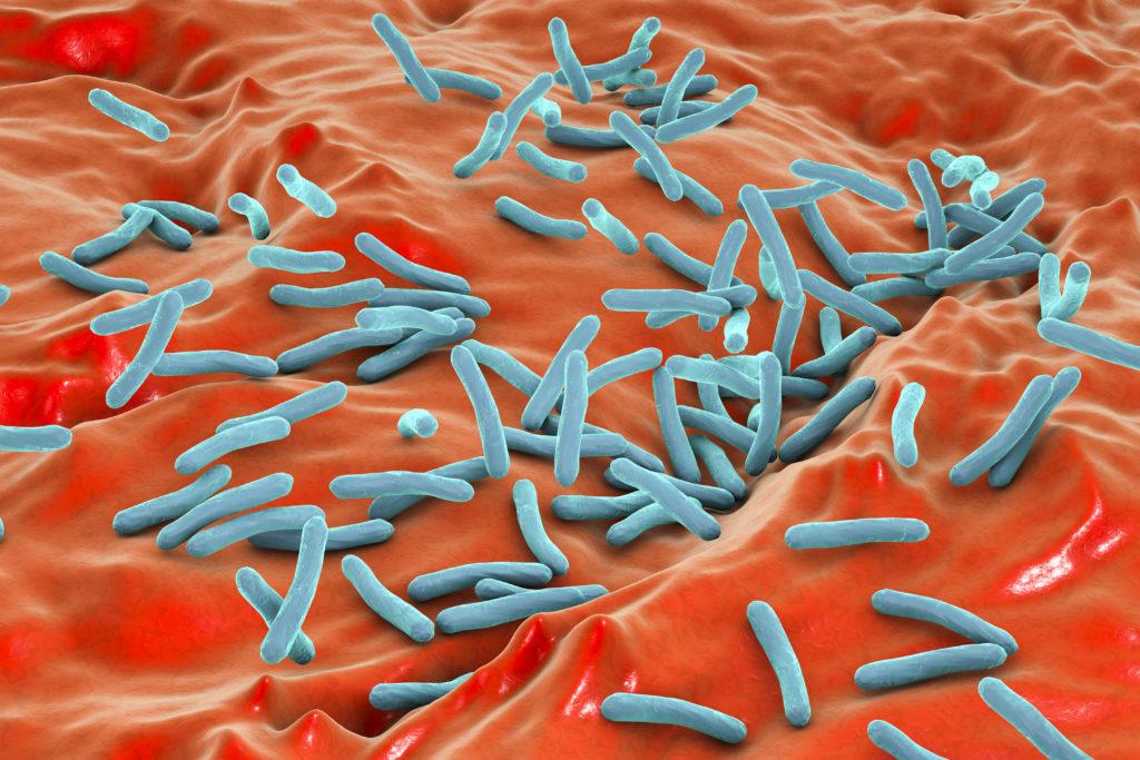 Bakterien als Pflanzenschutz. Bild: Dr_Kateryna - fotolia