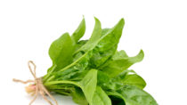 Spinat unterstützt den Muskelwachstum. Bild: spline_x - fotolia
