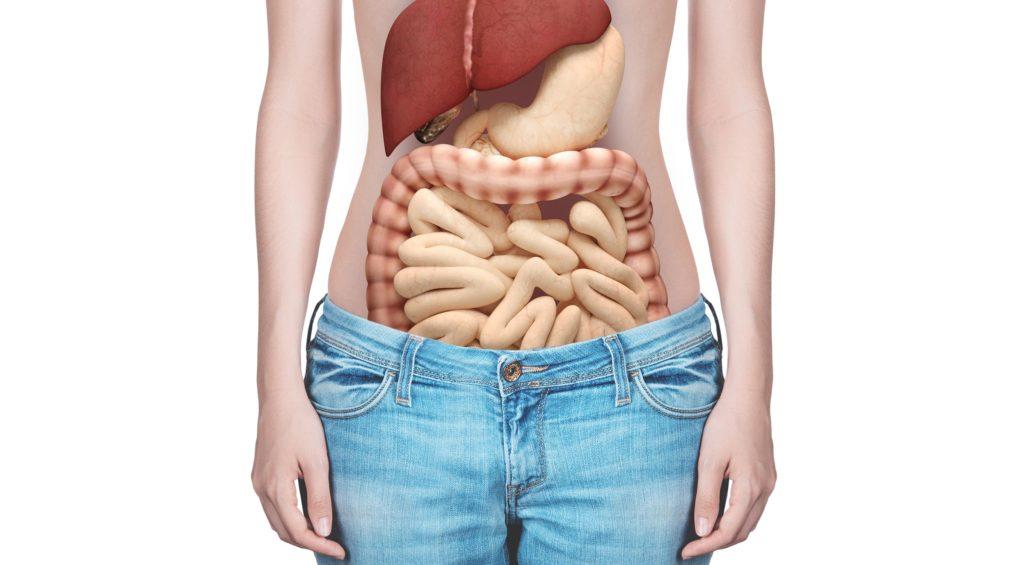 Darmträgheit: Ursachen, Symptome und Therapie