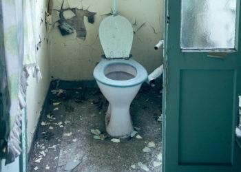 Klobrillen in öffentlichen Toiletten  finden viele zwar eklig, Keime kommen so aber kaum in den Körper.