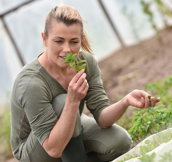 Erst betörend und dann stark riechend: Die Schweißfußpflanze. Bild: goodluz - fotolia