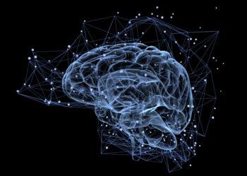 Beeinflusst unser Immunsystem bestimmte Vorgänge in unserem Gehirn? Forscher stellten fest, dass unser Immunstem unser soziales Verhalten beeinflussen kann und sogar Auswirkungen auf soziale Defizite bei neurologischen Erkrankungen hat. (Bild: Tatiana Shepeleva/fotolia.com)