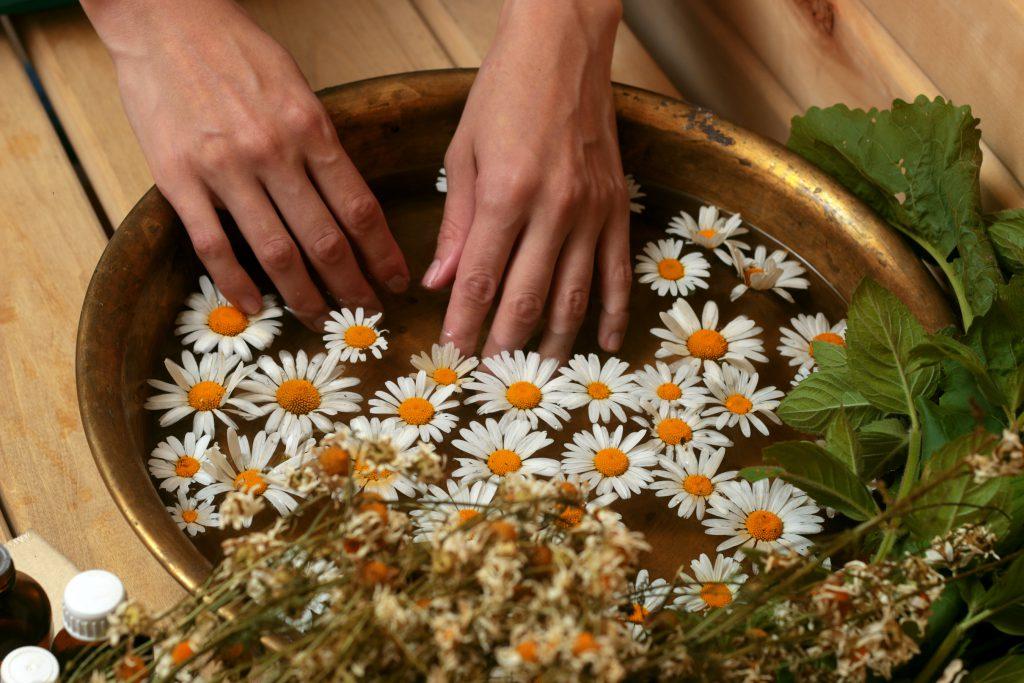 Ein Fingerbad mit Kamillenblüten