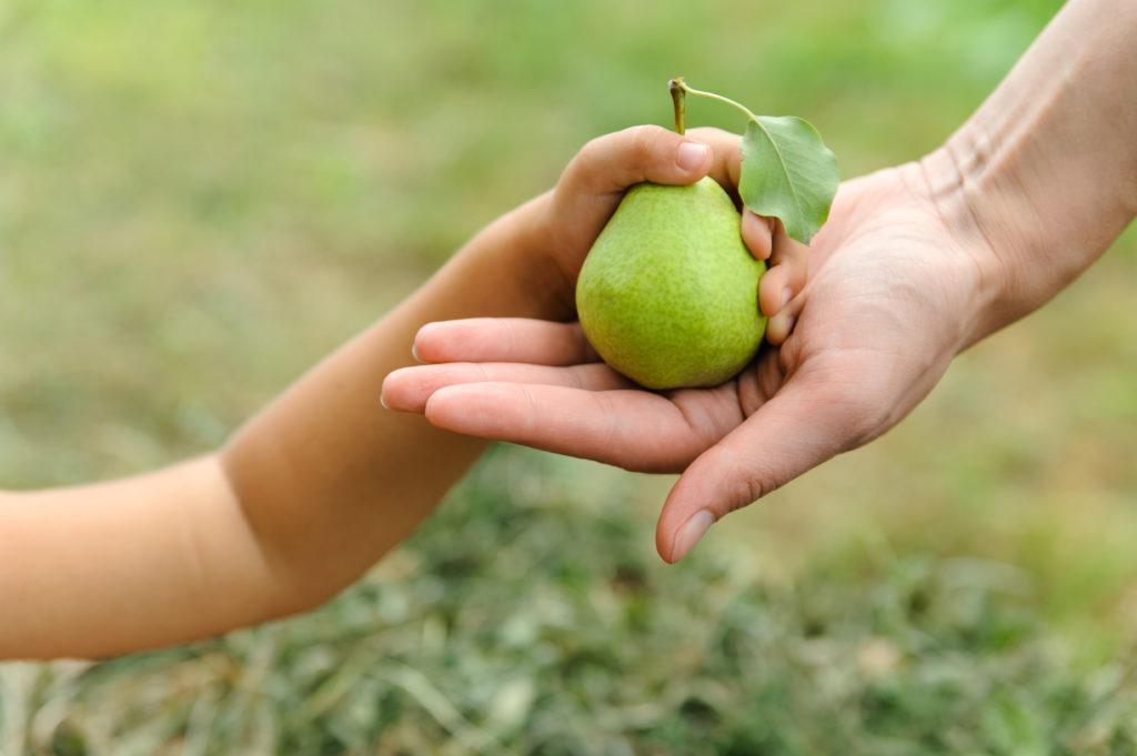 Kinder sollten, wie auch Erwachsene, täglich fünf Portionen Obst und Gemüse zu sich nehmen. Die Größe der Portion richtet sich dabei nach der Größe der Kinderhand. (Bild: yunava1/fotolia.com)