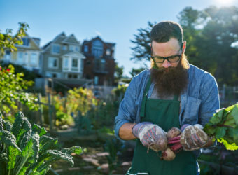 Gemüseanbau mitten in der Stadt. Bild: Joshua Resnick - fotolia
