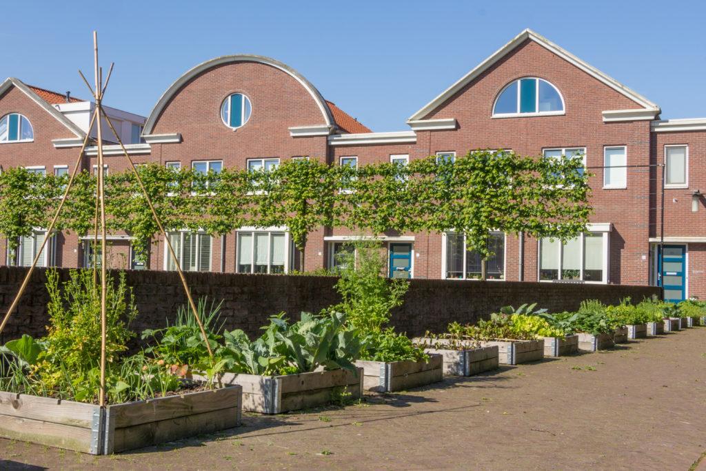 """""""Urban greening"""". Die Stadt holt sich ihr Grün zurück. Bild: © HildaWeges - fotolia"""