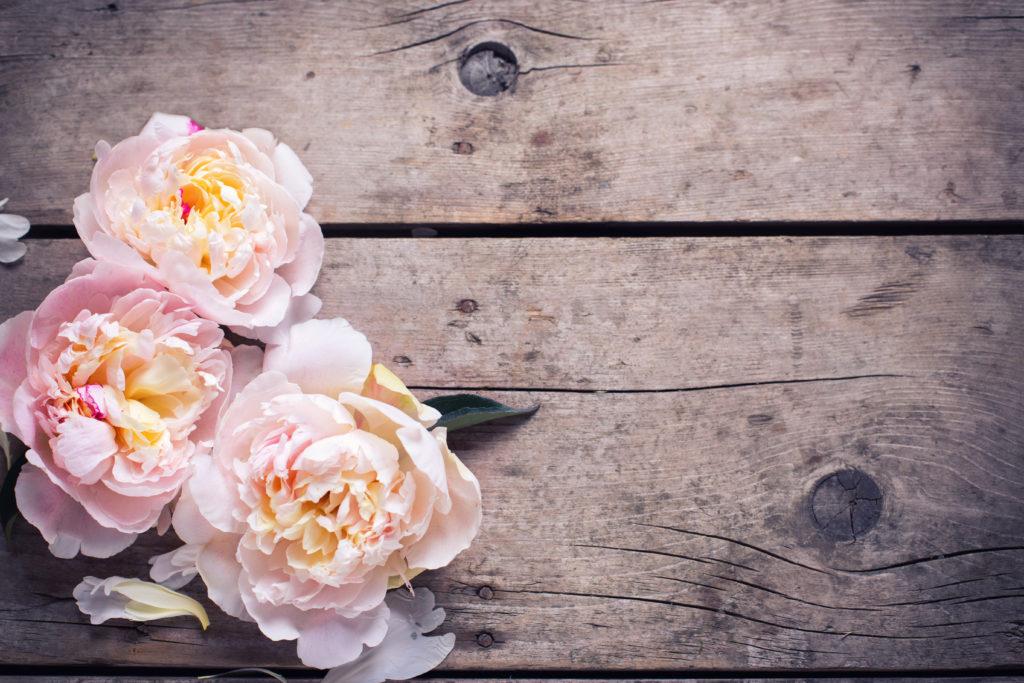 Holz kann heilsam sein. Bild: © daffodilred - fotolia