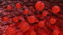 Bis heute teilen sich die Krebszellen und dienen der Wissenschaft zur Erforschung von Krebserkrankungen. Bild: fotoliaxrender - fotolia