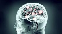 US-amerikanische Forscher warnen davor, dass sich Hacker schon in ein wenigen Jahren Zugang zum menschlichen Gehirn verschaffen könnten. Auch Polizei und Regierungen könnten solche Möglichkeiten ausnutzen. (Bild: the_lightwriter/fotolia.com)