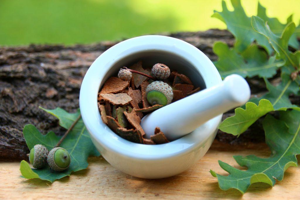Die indianische Medizin kennt viele Heilpflanzen, die noch heute Anwendung finden. Bild: goldbany - fotolia