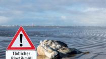 Gesundheitsgefahr durch Plastik in den Meeren. Bild: animaflora - fotolia
