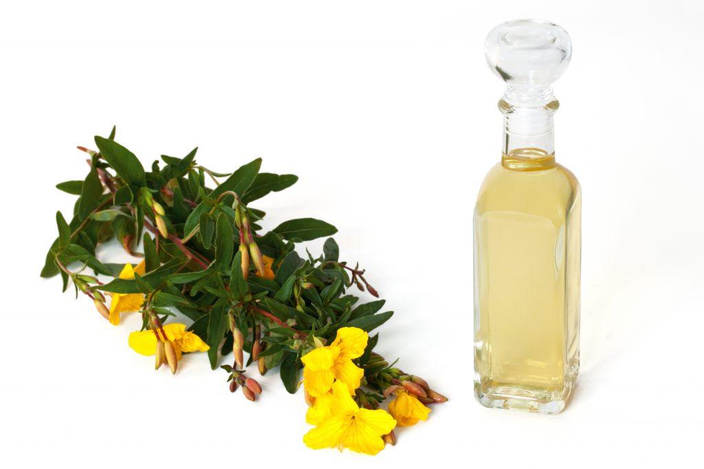 Auch Nachtkerzenöl kann innerlich und äußerlich bei Herpesbläschen angwandt werden. (Bild: H. Brauer/fotolia.com)