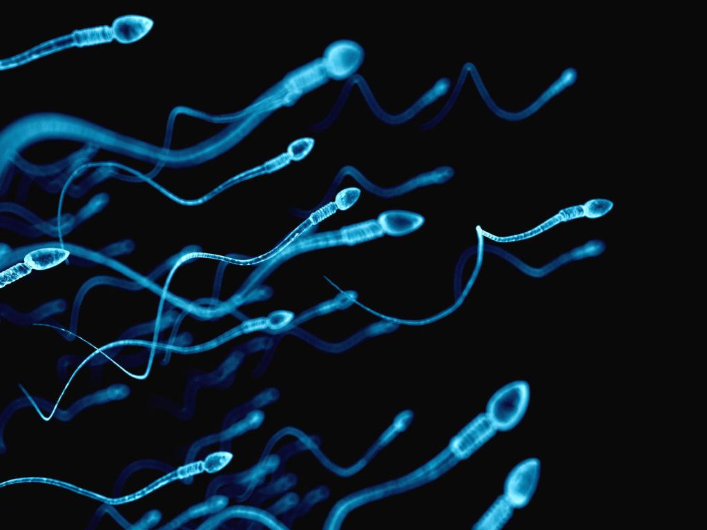 In den USA hat ein Arzt sein eigenes Sperma verwendet, um rund 50 Frauen zu befruchten. Nun wurde bekannt, dass er von mindestens acht Kindern der biologische Vater ist. (Bild: Sebastian Kaulitzki/fotolia.com)