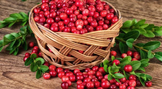 Atemberaubend Mit Cranberries und Antibiotika resistente Bakterien bekämpfen @PP_96