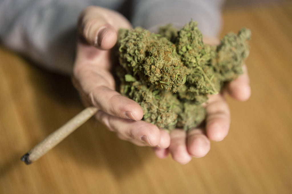 Ein exzessiver Cannabis-Konsum hat erhebliche Auswirkungen auf die Knochendichte und erhöht möglicherweise das Osteoporose-Risiko. (Bild: zix777/fotolia.com)