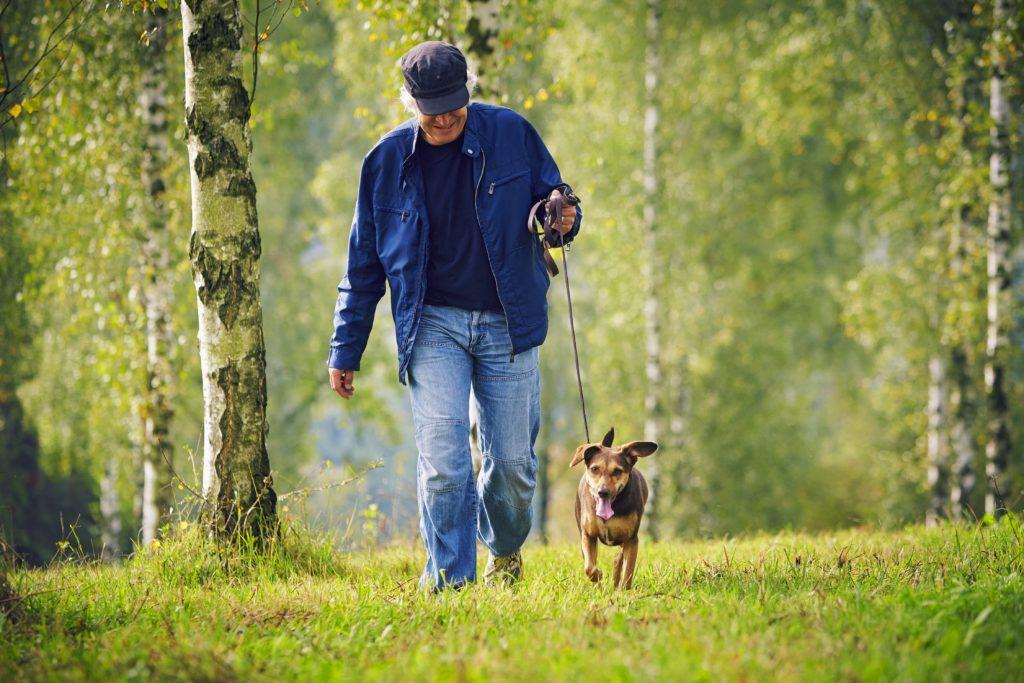 Gassi gehen fördert die Gesundheit von Hundehaltern. Regelmäßige Bewegung reduziert unter anderem das Risiko für Herz-Kreislauf-Krankheiten. (Bild: upixa/fotolia.com)