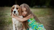 Kinder wissen in der Regel, dass sie sich wütenden Hunden nicht nähern sollten. Doch auch ängstliche Hunde können für sie zur Gefahr werden, warnen Forscher. (Bild: Kristina Stasiuliene/fotolia.com)