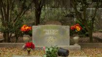 Die Zahl der AIDS-Toten stieg in den 1980ern in den USA rasant. (stephenallens75/fotolia.com)