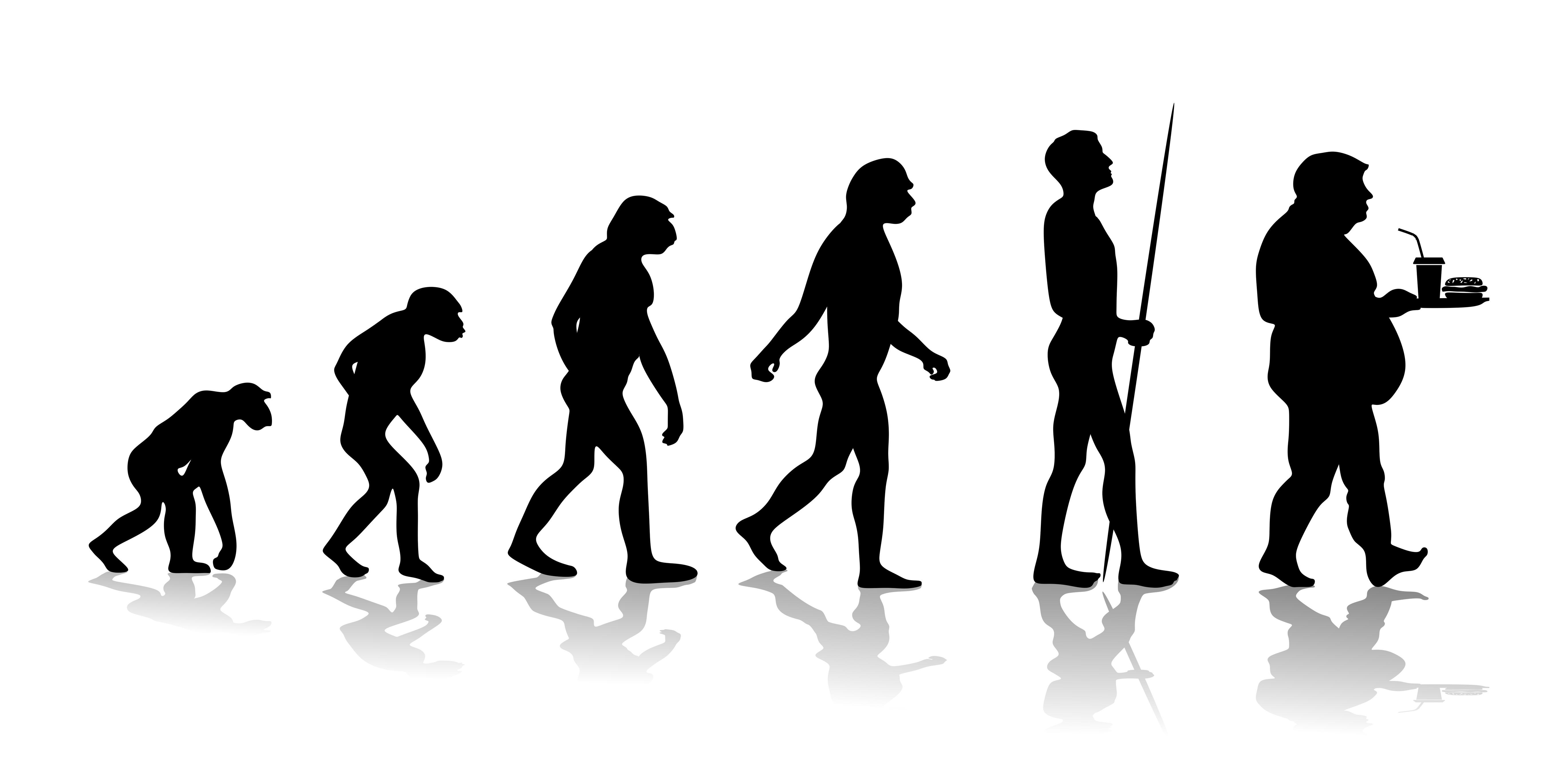 In der Evolution sicherte eine Fettschicht das Überleben (Fiedels/ fotolia.com)