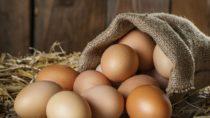 Lange Zeit wurden Menschen vor einem täglichen Konsum von Eiern gewarnt. Regelmäßiger Verzehr stand im Ruf ungesund zu sein. Mediziner fanden jetzt aber heraus, dass Eier keineswegs schädlich sind, sie können sogar vor Schlaganfällen schützen. (Bild: iprachenko/fotolia.com)