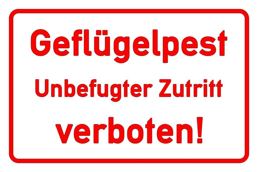 Die Vogelgrippe breitet sich immer weiter aus. In Schleswig-Holstein müssen nun 30.000 Hühner einer Massentierhaltung getötet werden. In manchen Regionen soll eine Stallpflicht verhängt werden. (Bild: fotohansel/fotolia.com)