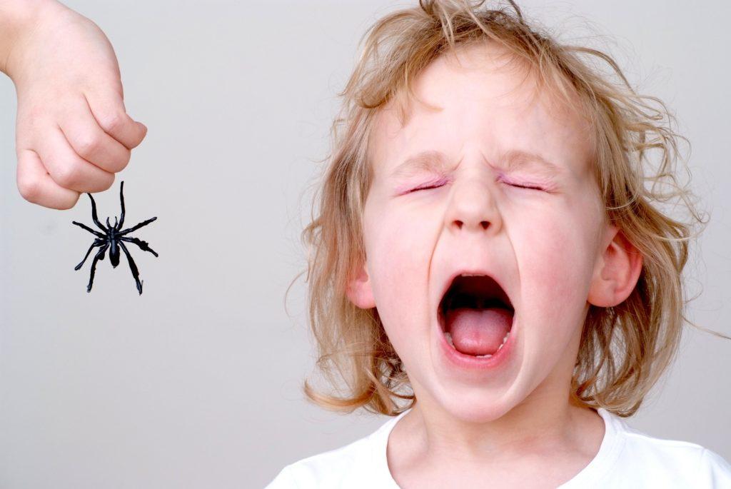 Besonders gut lässt sich der Placebo-Effekt zur Behandlung von Phobien wie beispielsweise der Spinnenangst nutzen. (Bild: pegbes/fotolia.com)