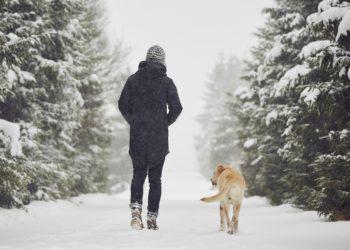 Schneelandschaften locken Wanderer und Wintersportler nach draußen in die Berge. Doch das grelle Sonnenlicht in den Wintersportgebieten birgt Gefahren für die Augen. Experten rufen daher dazu auf, die Augen vor der UV-Strahlung zu schützen.(Bild: chalabala/fotolia.com)