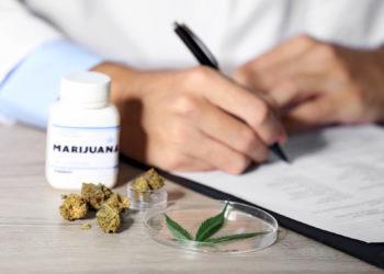 Der Bundesrat hat grünes Licht für die Freigabe von Cannabis-Verordnungen in Ausnahmefällen gegeben. (Bild: Africa Studio/fotolia.com)