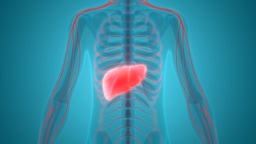 Wasser im Bauch - Ursachen, Symptome und Therapie