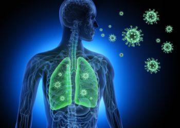 Vogelgrippe-Viren können auch Menschen infizieren und befallen dabei meist den Atemtrakt. Eine spezielle mineralische Schutzschicht, die sie zuvor im Körper von Vögeln aufbauen, macht die Erreger für Menschen besonders infektiös. (Bild: psdesign1/fotlia.com)
