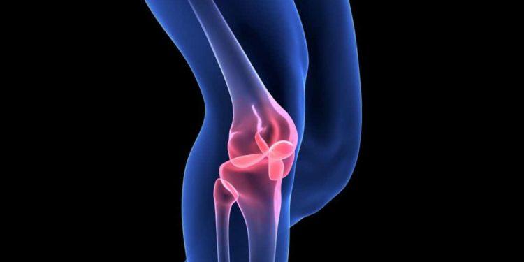 Eine Animation eines Kniegelenks