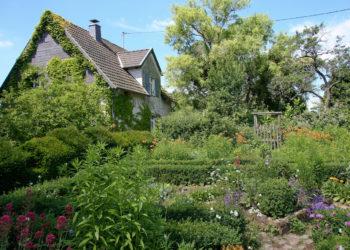 Im Einklang: Der Naturgarten. Bild: Christine Kuchem-fotolia