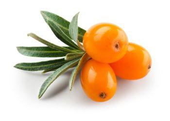 Sanddornfrüchte enthalten jede Menge Vitamin C. (Bild: Tim UR/fotolia.com)