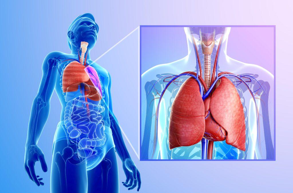 verletzung der lunge durch rippenbruch
